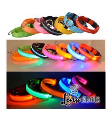 LED halsband